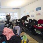 Nyfödd, nyinflyttad eller adopterad
